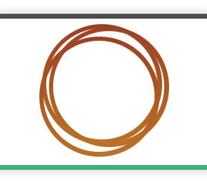 Phosphor Bronze wire (coiled)